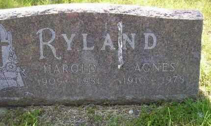 RYLAND, AGNES - Kingsbury County, South Dakota | AGNES RYLAND - South Dakota Gravestone Photos