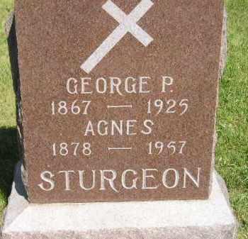 STURGEON, GEORGE P. - Kingsbury County, South Dakota | GEORGE P. STURGEON - South Dakota Gravestone Photos