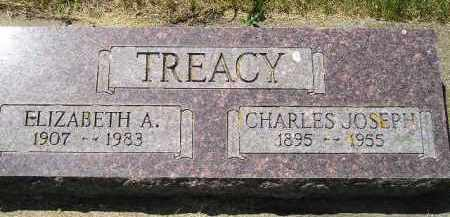 TREACY, CHARLES JOSEPH - Kingsbury County, South Dakota | CHARLES JOSEPH TREACY - South Dakota Gravestone Photos