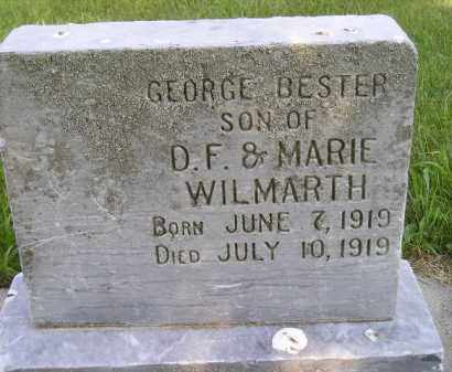 WILMARTH, GEORGE BESTER - Kingsbury County, South Dakota | GEORGE BESTER WILMARTH - South Dakota Gravestone Photos