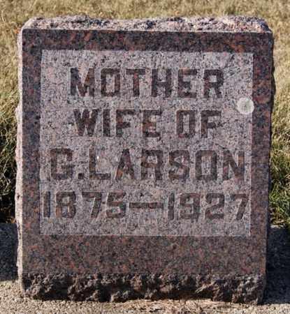 OLSON LARSON, CARRIE - Lake County, South Dakota | CARRIE OLSON LARSON - South Dakota Gravestone Photos