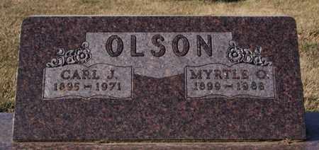 OLSON, CARL J - Lake County, South Dakota | CARL J OLSON - South Dakota Gravestone Photos
