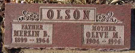 OLSON, MERLIN B - Lake County, South Dakota | MERLIN B OLSON - South Dakota Gravestone Photos