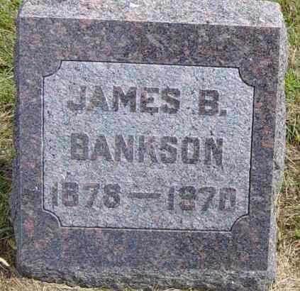 BANKSON, JAMES B - Lincoln County, South Dakota | JAMES B BANKSON - South Dakota Gravestone Photos