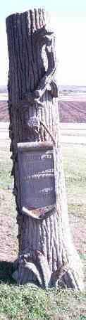 BARGER, SAMUEL W - Lincoln County, South Dakota   SAMUEL W BARGER - South Dakota Gravestone Photos