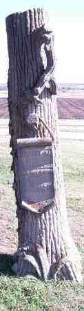 BARGER, SYLVIA A - Lincoln County, South Dakota | SYLVIA A BARGER - South Dakota Gravestone Photos