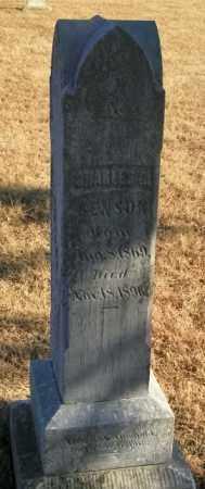 BENSON, CHARLES - Lincoln County, South Dakota | CHARLES BENSON - South Dakota Gravestone Photos
