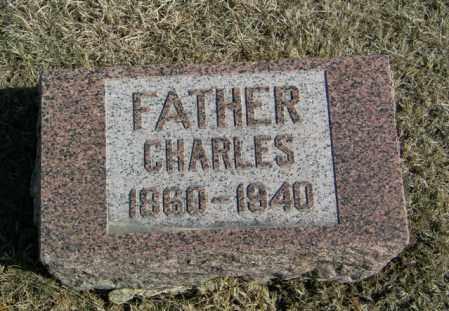 BERGSTROM, CHARLES - Lincoln County, South Dakota | CHARLES BERGSTROM - South Dakota Gravestone Photos
