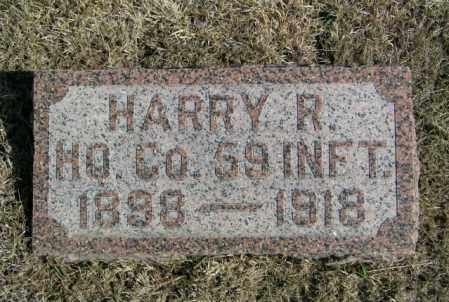 BERGSTROM, HARRY R - Lincoln County, South Dakota | HARRY R BERGSTROM - South Dakota Gravestone Photos