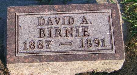BIRNIE, DAVID A. - Lincoln County, South Dakota | DAVID A. BIRNIE - South Dakota Gravestone Photos