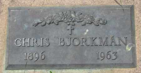 BJORKMAN, CHRIS - Lincoln County, South Dakota | CHRIS BJORKMAN - South Dakota Gravestone Photos