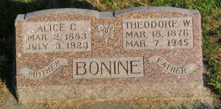 BONINE, THEODORE W. - Lincoln County, South Dakota | THEODORE W. BONINE - South Dakota Gravestone Photos