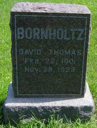 BORNHOLTZ, DAVID THOMAS - Lincoln County, South Dakota   DAVID THOMAS BORNHOLTZ - South Dakota Gravestone Photos