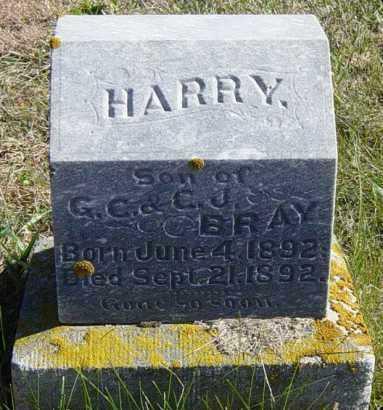 BRAY, HARRY - Lincoln County, South Dakota | HARRY BRAY - South Dakota Gravestone Photos