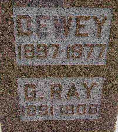 BURNEY, G RAY - Lincoln County, South Dakota | G RAY BURNEY - South Dakota Gravestone Photos