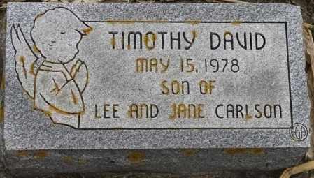 CARLSON, TIMOTHY DAVID - Lincoln County, South Dakota | TIMOTHY DAVID CARLSON - South Dakota Gravestone Photos