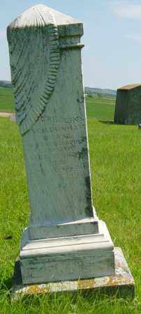 DUNHAM, CAROLINE W H - Lincoln County, South Dakota | CAROLINE W H DUNHAM - South Dakota Gravestone Photos