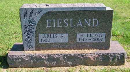 EIESLAND, H. LLOYD - Lincoln County, South Dakota | H. LLOYD EIESLAND - South Dakota Gravestone Photos
