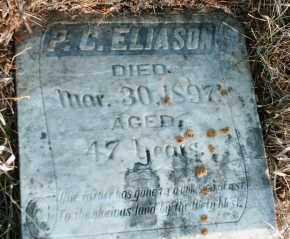 ELIASON, PETER CHRISTIAN - Lincoln County, South Dakota   PETER CHRISTIAN ELIASON - South Dakota Gravestone Photos