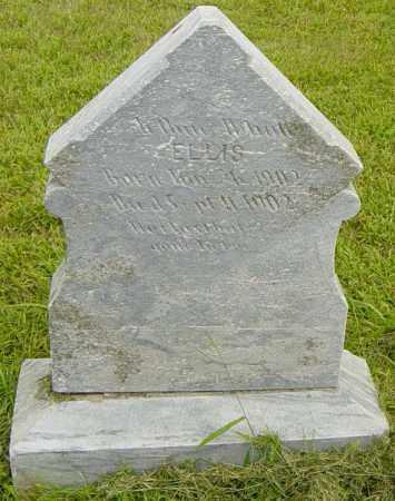 ELLIS, ANN (?) - Lincoln County, South Dakota | ANN (?) ELLIS - South Dakota Gravestone Photos