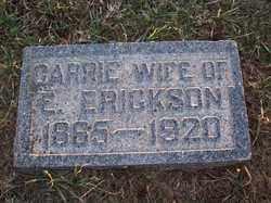 "ERICKSON, CARRIE ""KARI"" - Lincoln County, South Dakota   CARRIE ""KARI"" ERICKSON - South Dakota Gravestone Photos"