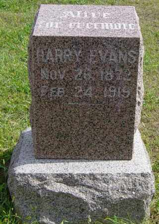 EVANS, HARRY - Lincoln County, South Dakota | HARRY EVANS - South Dakota Gravestone Photos