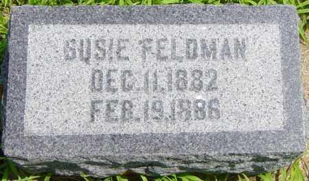 FELDMAN, SUSIE - Lincoln County, South Dakota | SUSIE FELDMAN - South Dakota Gravestone Photos