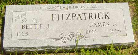FITZPATRICK, BETTIE J - Lincoln County, South Dakota | BETTIE J FITZPATRICK - South Dakota Gravestone Photos