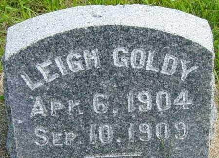 GOLDY, LEIGH - Lincoln County, South Dakota   LEIGH GOLDY - South Dakota Gravestone Photos