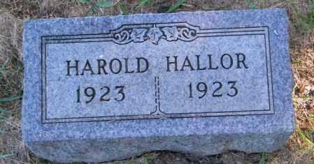 HALLOR, HAROLD - Lincoln County, South Dakota   HAROLD HALLOR - South Dakota Gravestone Photos