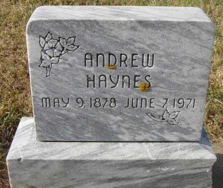 HAYNES, ANDREW - Lincoln County, South Dakota | ANDREW HAYNES - South Dakota Gravestone Photos