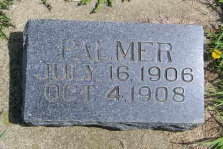 JENSEN, PALMER - Lincoln County, South Dakota   PALMER JENSEN - South Dakota Gravestone Photos
