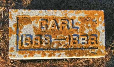 JOHNSON, CARL - Lincoln County, South Dakota | CARL JOHNSON - South Dakota Gravestone Photos