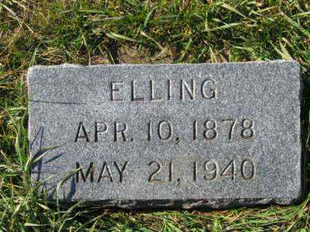 JOHNSON, ELLING G - Lincoln County, South Dakota | ELLING G JOHNSON - South Dakota Gravestone Photos