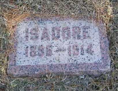 JOHNSON, ISADORE - Lincoln County, South Dakota | ISADORE JOHNSON - South Dakota Gravestone Photos