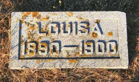 JOHNSON, LOUSIA - Lincoln County, South Dakota | LOUSIA JOHNSON - South Dakota Gravestone Photos