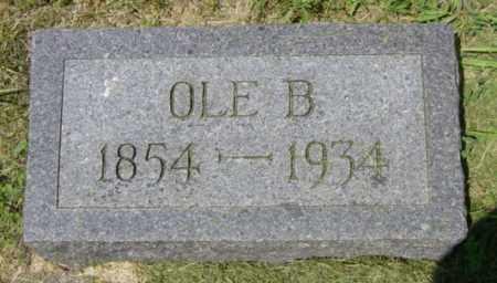 JOHNSON, OLE B - Lincoln County, South Dakota   OLE B JOHNSON - South Dakota Gravestone Photos