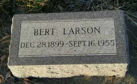 LARSON, BERT - Lincoln County, South Dakota | BERT LARSON - South Dakota Gravestone Photos