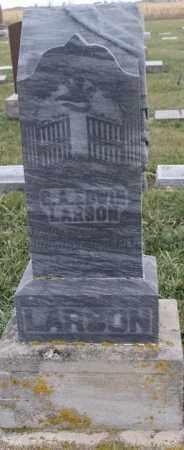 LARSON, C. A. EDWIN - Lincoln County, South Dakota | C. A. EDWIN LARSON - South Dakota Gravestone Photos
