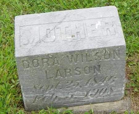 LARSON, DORA - Lincoln County, South Dakota | DORA LARSON - South Dakota Gravestone Photos