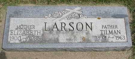 LARSON, TILMAN - Lincoln County, South Dakota | TILMAN LARSON - South Dakota Gravestone Photos