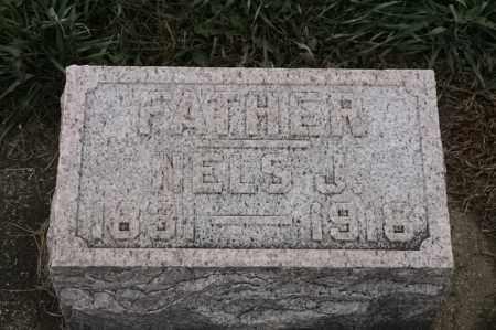 LARSON, NELS J - Lincoln County, South Dakota | NELS J LARSON - South Dakota Gravestone Photos