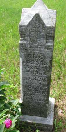LARSON, OLE - Lincoln County, South Dakota | OLE LARSON - South Dakota Gravestone Photos