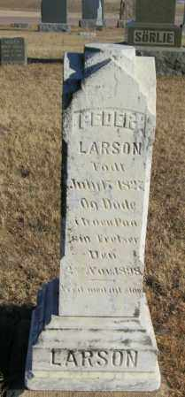 LARSON, PEDER - Lincoln County, South Dakota   PEDER LARSON - South Dakota Gravestone Photos