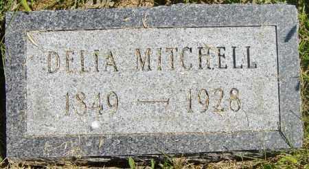 MITCHELL, DELIA - Lincoln County, South Dakota   DELIA MITCHELL - South Dakota Gravestone Photos