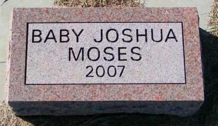 MOSES, JOSHUA - Lincoln County, South Dakota | JOSHUA MOSES - South Dakota Gravestone Photos