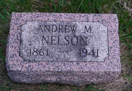 NELSON, ANDREW M - Lincoln County, South Dakota | ANDREW M NELSON - South Dakota Gravestone Photos