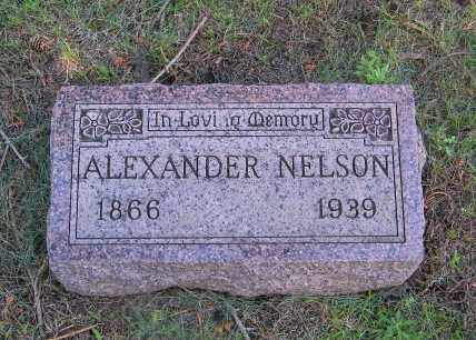 NELSON, ALEXANDER - Lincoln County, South Dakota | ALEXANDER NELSON - South Dakota Gravestone Photos
