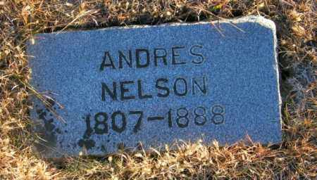 NELSON, ANDRES - Lincoln County, South Dakota | ANDRES NELSON - South Dakota Gravestone Photos