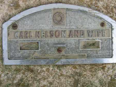 NELSON, CARL - Lincoln County, South Dakota | CARL NELSON - South Dakota Gravestone Photos